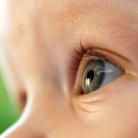 Sinne: Sehvermögen des Babys: von verschwommen bis deutlich