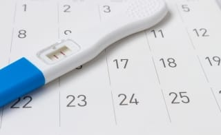 Die 4. Schwangerschaftswoche