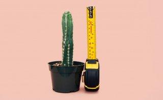 Wachstumsrechner – Wird mein Kind so gross wie ich?