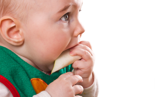 Wie das Baby kauen lernt.